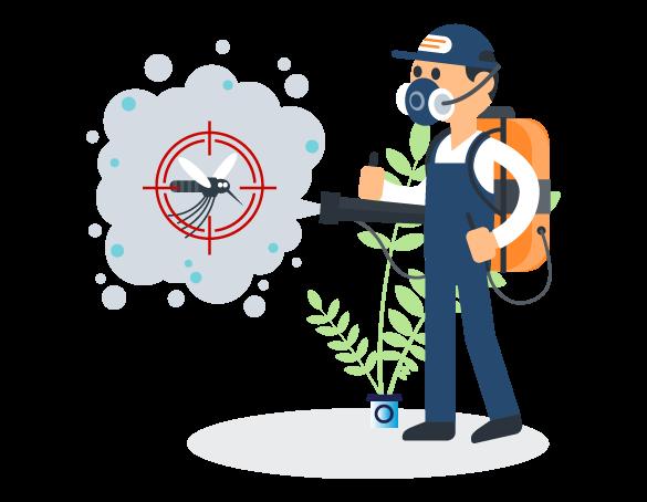 Professional Pest Control Morningside